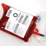 ASN Dinas Perhubungan Aceh Sumbang 67 Kantong Darah