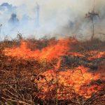 Polda Aceh Ingatkan Warga tidak Membakar saat Membuka Lahan