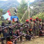 Kontak Tembak dengan Satgas Nemangkawi di Ilaga Papua, 5 KKB Tewas