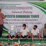 Tingkatkan Ekonomi Petani, BPTP Aceh Gelar Bimtek Produksi Benih Padi di Aceh Besar
